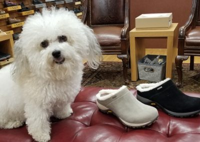 Boo Boo with the Parsons in sand and black suede for $140.00 waterproof and slip resistant